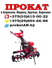 Аренда Прокат культиватора Борисов Жодин,  Крупки Березино Смолевичи